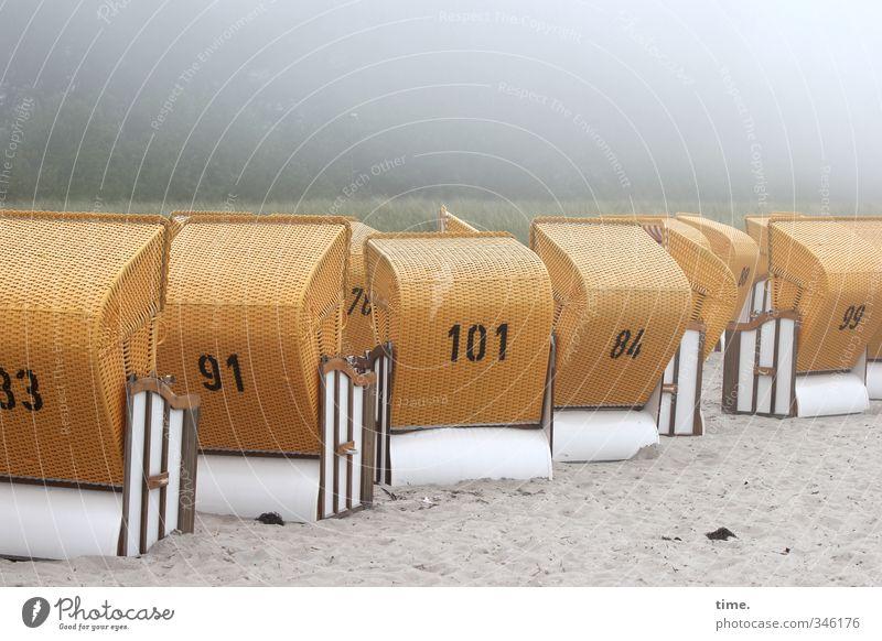 Pech für die Kuh Elsa   offene Körbe - geschlossene Wolkendecke Ferien & Urlaub & Reisen Tourismus Ausflug Möbel Strandkorb Umwelt Sand schlechtes Wetter Nebel