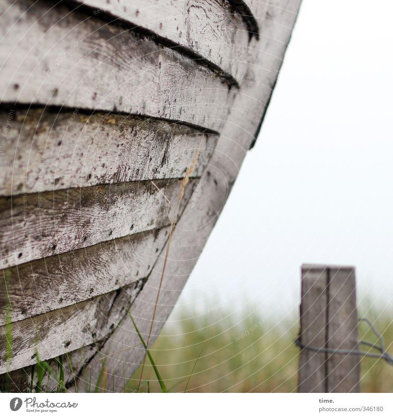 Ankerplätzchen Horizont Wiese Schifffahrt Schiffswrack Schiffsplanken Poller Draht Drahtseil Holz alt authentisch historisch klein trocken Optimismus Vertrauen