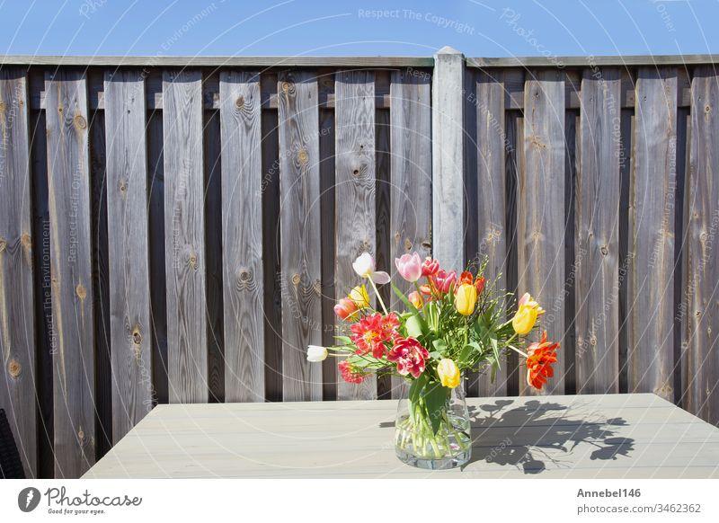 Strahlender Frühlingsstrauß bunter Blumen in einer Glasvase auf einem Gartentisch in der Nähe eines Holzzauns an einem sonnigen Tag Tisch hell Vase schön