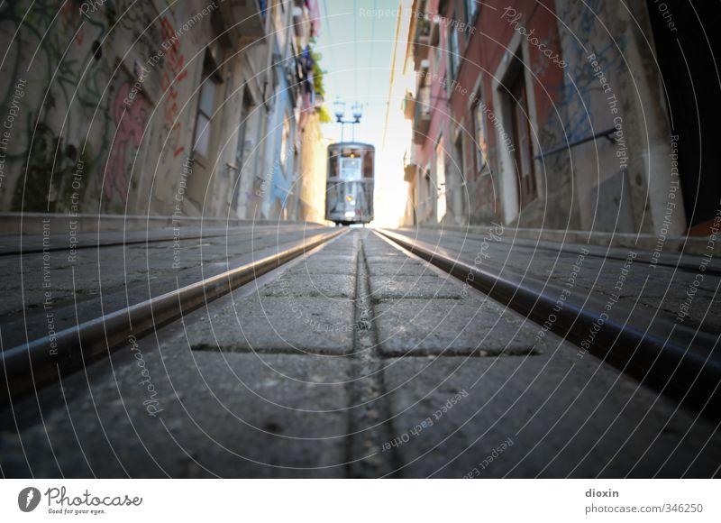 Ascensor da Bica Ferien & Urlaub & Reisen alt Stadt Sommer Haus Straße außergewöhnlich Verkehr authentisch Tourismus fahren Gleise Stadtzentrum Sehenswürdigkeit