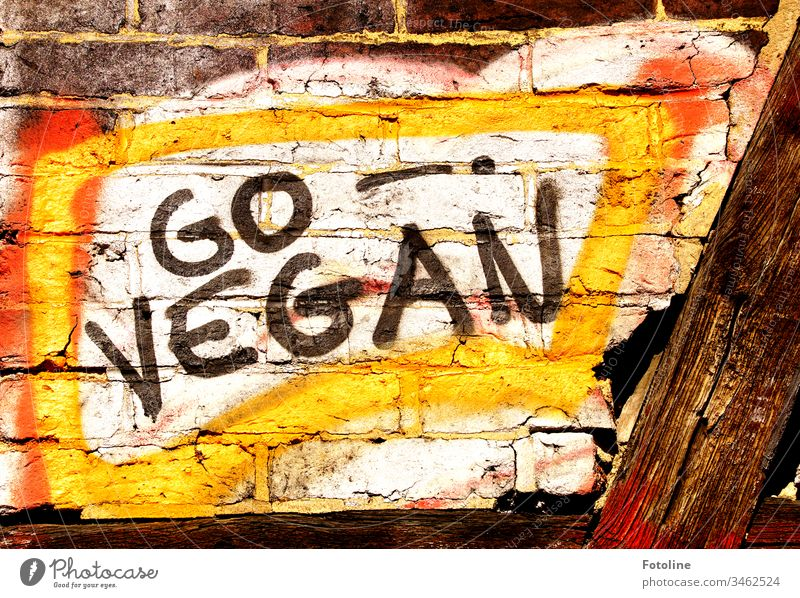 """Graffitti """"GO VEGAN"""" an einer Mauer eines Fachwerkhauses Go Vegan Grafitti Wand Buchstaben Rechte Grau Farbe grafitti Graffiti Wandmalereien Kunst"""