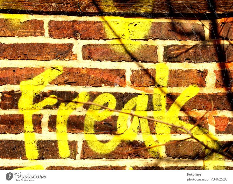 Freak? - oder der Schriftzug Freak als Graffiti auf einer alten Mauer Wand Außenaufnahme Farbfoto Menschenleer Schriftzeichen Tag Fassade Zeichen Nahaufnahme
