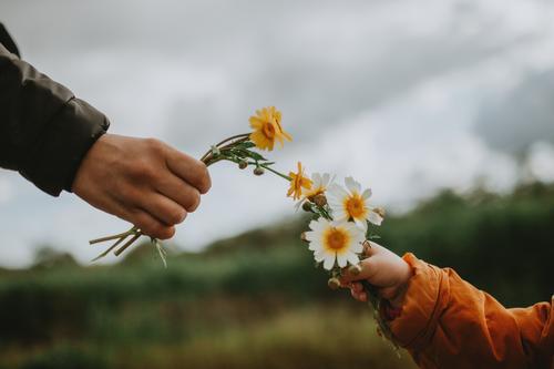 Mutter und Tochter halten Blumen Beteiligung Frühling Frühlingsblume Frühlingsgefühle Farbfoto Natur Pflanze Außenaufnahme Blüte Tag Frühblüher natürlich
