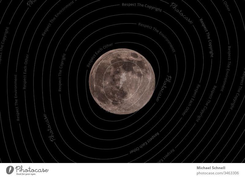 Vollmond am schwarzen Himmel Mond Kreis rund grau vollständig kreisrund Stern nachts Nachthimmel Textfreiraum unten Textfreiraum oben