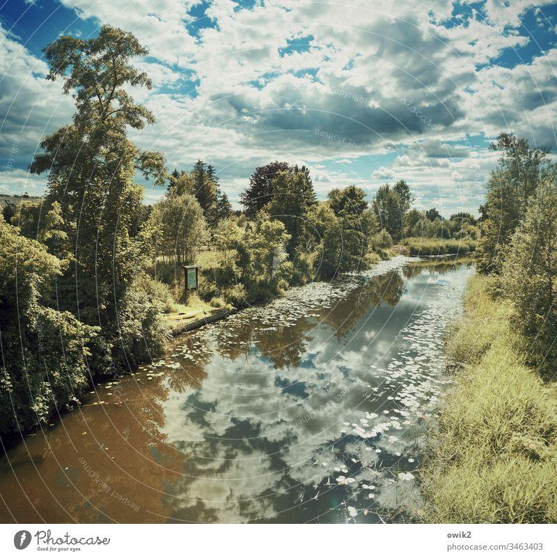 Fließende Grenze Landschaft Kanal Wasserstraße Gewässer fließend Außenaufnahme Farbfoto Natur Menschenleer Fluss Tag Reflexion & Spiegelung Sommer Umwelt