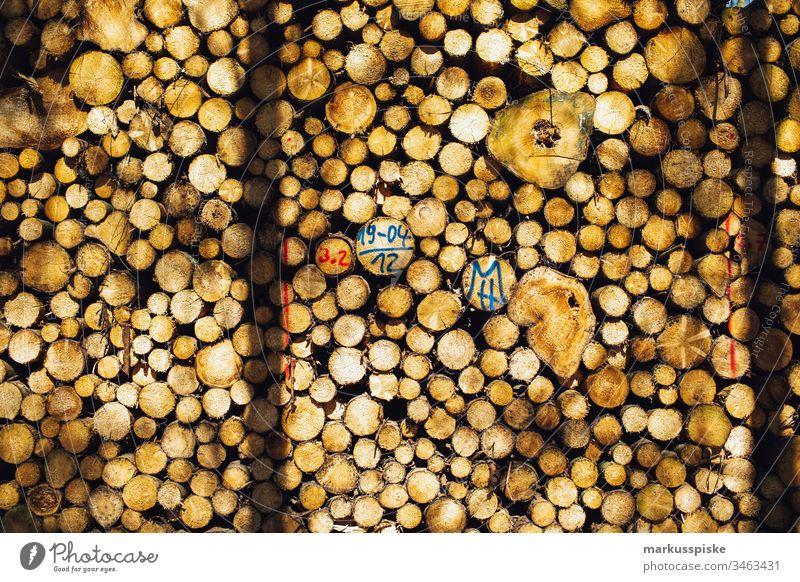 Holzstapel Brennholz Forstwirtschaft Schadholz Borkenkäfer Ster