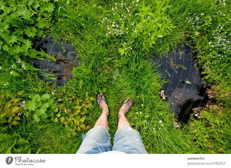 Wassergrundstück Mensch Natur Wasser Sommer Pflanze Erholung Blume Umwelt Wiese Gras Blüte Beine Garten Fuß Park maskulin