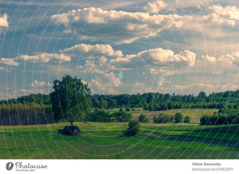 Landschaft mit Wiesen und Feldern in Lettland Reise Ackerland Perspektive Regie Sonnenlicht Boden Rasen Szene Wolkenlandschaft reisen Horizont Schmutz Tag Gras