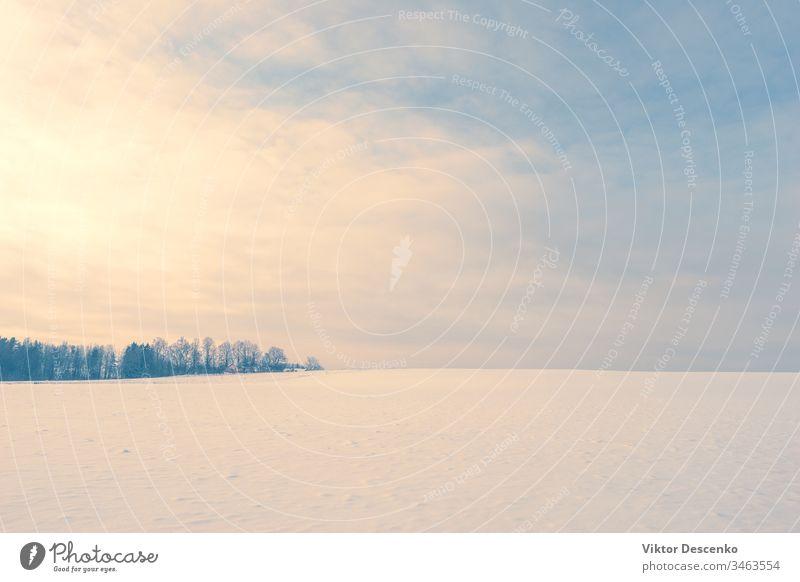 Abend über einem klaren Feld mit Schnee Dezember Sonnenuntergang Landschaft kalt Winter ländlich rosa verschneite Weihnachten purpur Sonnenaufgang Norden