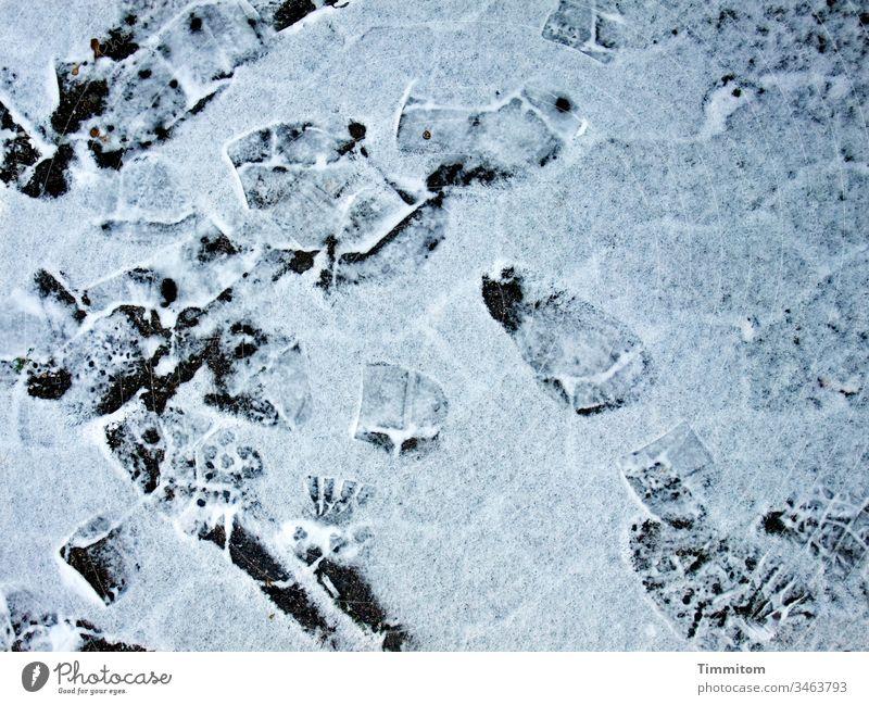 Kühle Spuren Winter Schnee Frost Abdrücke Fußspur Sohlen kalt weiß Menschenleer Wege & Pfade Pflastersteine