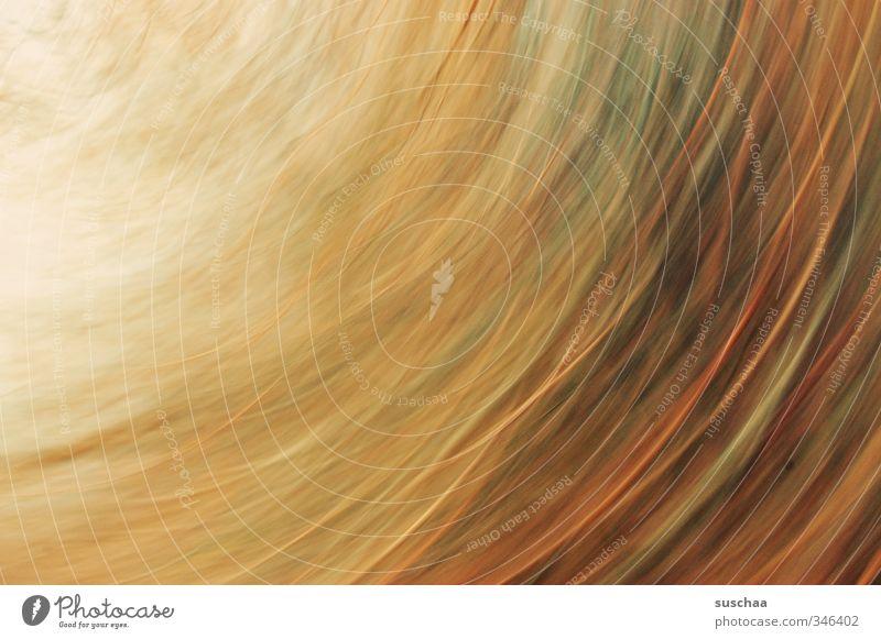 hab noch keinen Kunst Kunstwerk braun Inspiration Dynamik Streifen rotieren Bewegung Gedeckte Farben Außenaufnahme Experiment abstrakt Muster