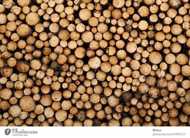 Nahaufnahme von Baumstämmen in der Natur. viele gefällte Stämme abstrakt Hintergrund Rinde braun Spanholz schließen Farbe kreativ geschnitten Design Energie