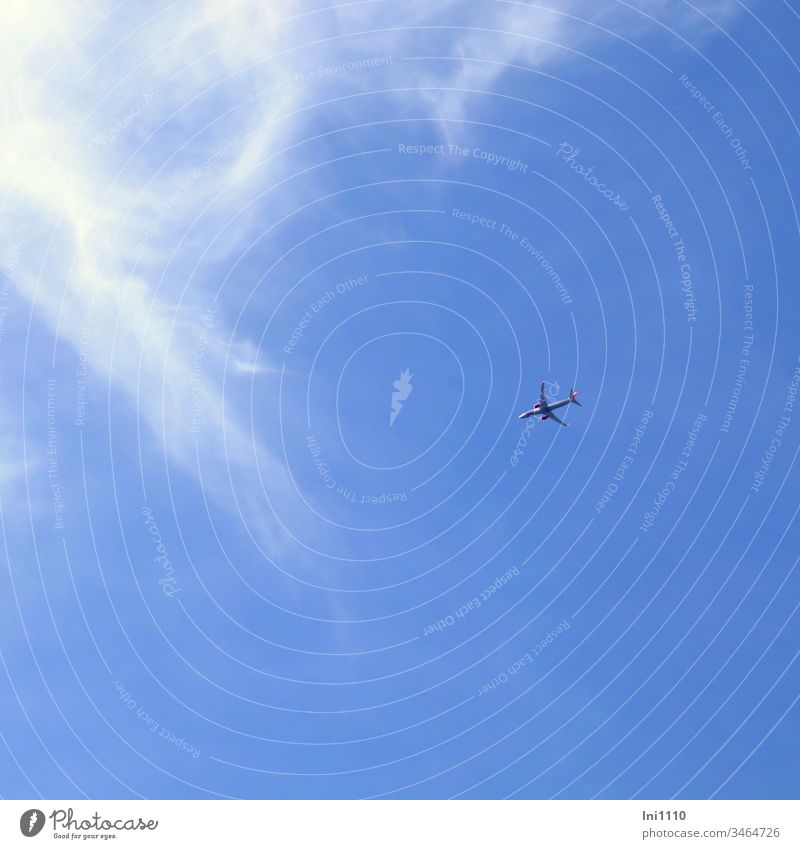 Flugzeug vor blauem Himmel mit Cirruswolken Höhe Urlaub Reisen Freiheit blauer Himmel durch die Luft am Himmel Sonnenschein Linienmaschine Fernweh menschenleer