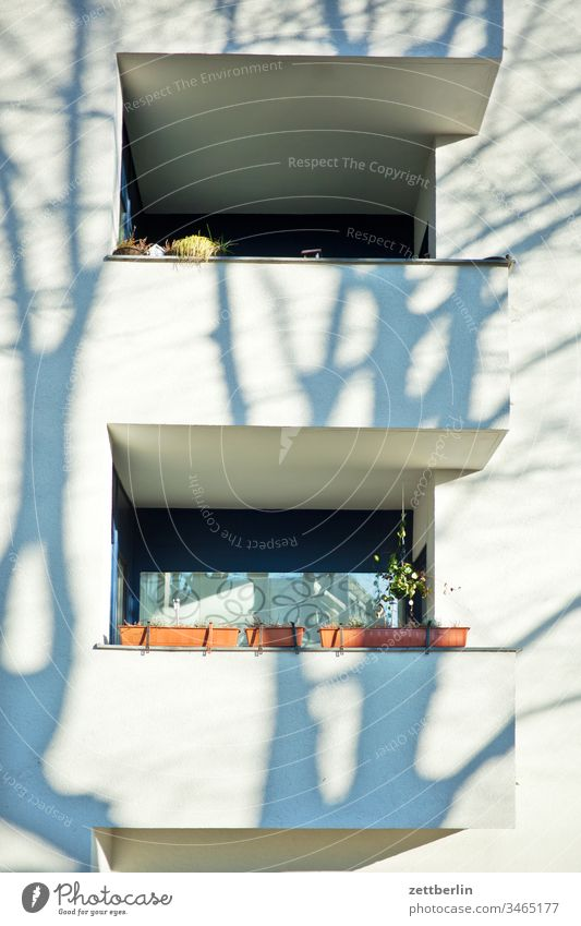 Balkons mit Schatten altbau außen fassade fenster haus hinterhaus hinterhof innenhof innenstadt mauer mehrfamilienhaus menschenleer mietshaus textfreiraum wand