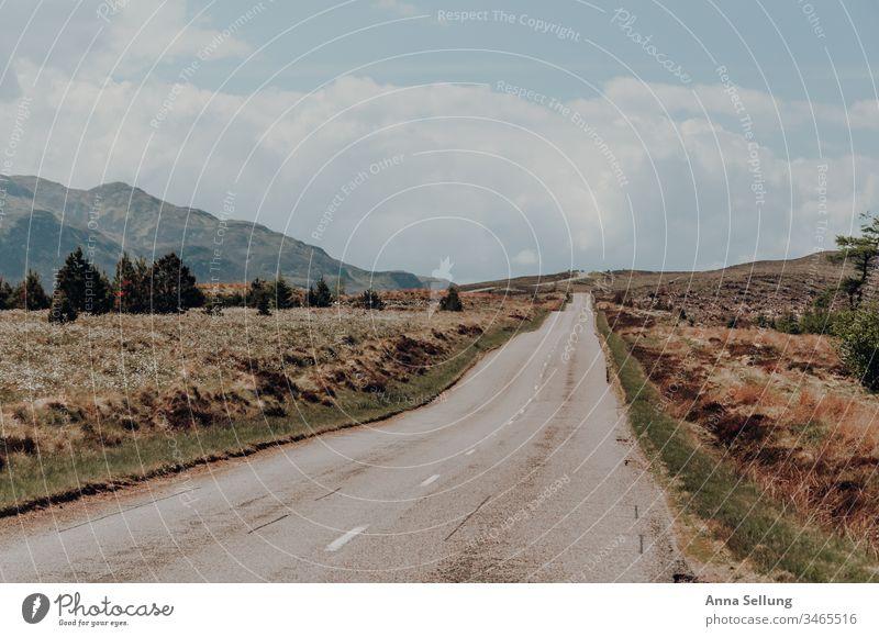 Leere wellige Straße bei schönem Wetter leer Verkehrswege Straßenverkehr Menschenleer Farbfoto Wege & Pfade Autofahren Linie Verkehrsmittel Außenaufnahme