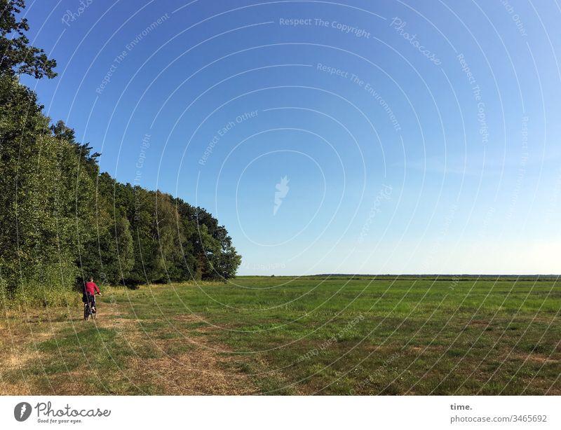 Urlaubsverkehr tageslicht sommer sonnenlicht radfahren landschaft wald wiese bäume himmel urlaub reisen erholung querfeldein acker horizont sportlich abenteuer