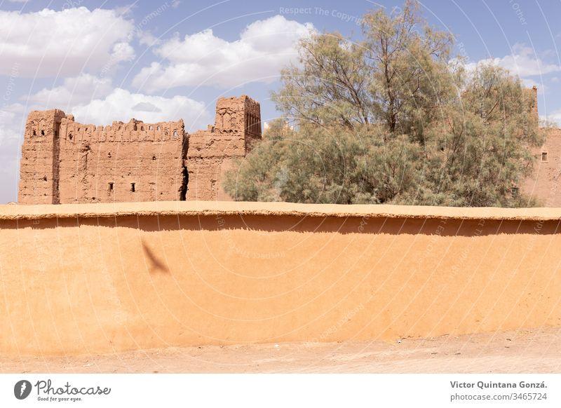 Marokkanische Straße mit Vogelschatten Afrikanisch Berber marrakech Marokkaner Marokko Lehmziegel antik Antiquität Bogen Architektur Kunst Gebäude Hof Tür