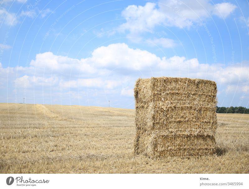 Fresspaket himmel stehen horizont sonnenlicht wolken acker getreide getreidefeld strohballen abgemäht gestapelt heuballen tierfutter landwirtschaft stückgut