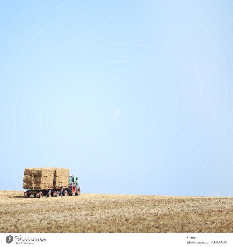 Fresspaketservice himmel stehen horizont sonnenlicht acker getreide getreidefeld strohballen abgemäht gestapelt heuballen tierfutter landwirtschaft stückgut