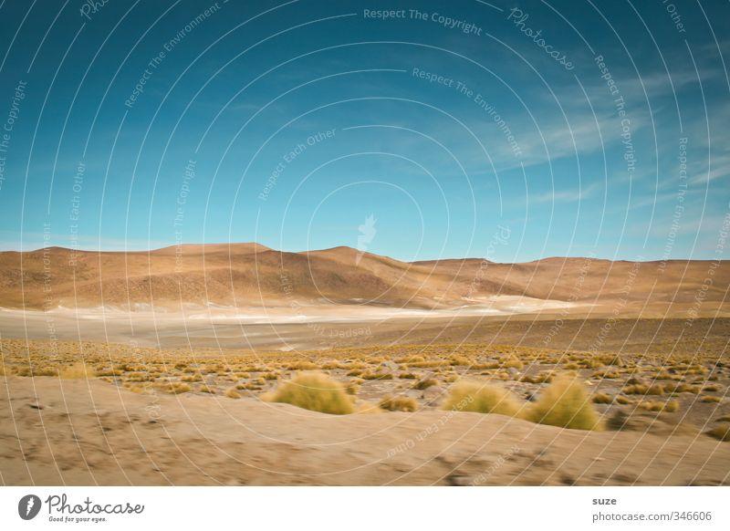 Spuren im Sand Himmel Natur Ferien & Urlaub & Reisen blau Sommer Einsamkeit Landschaft Umwelt Reisefotografie Gras außergewöhnlich Horizont Luft braun Wetter