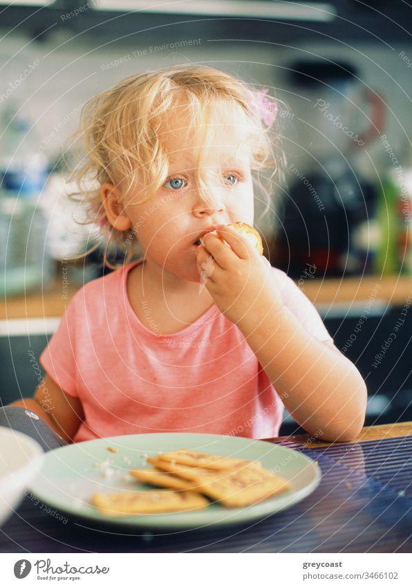 Porträt eines kleinen Mädchens mit zerzaustem blonden Haar beim Frühstück in der Küche Kind essen Kleinkind Baby Mahlzeit Morgen heimwärts Brötchen Gebäck Keks