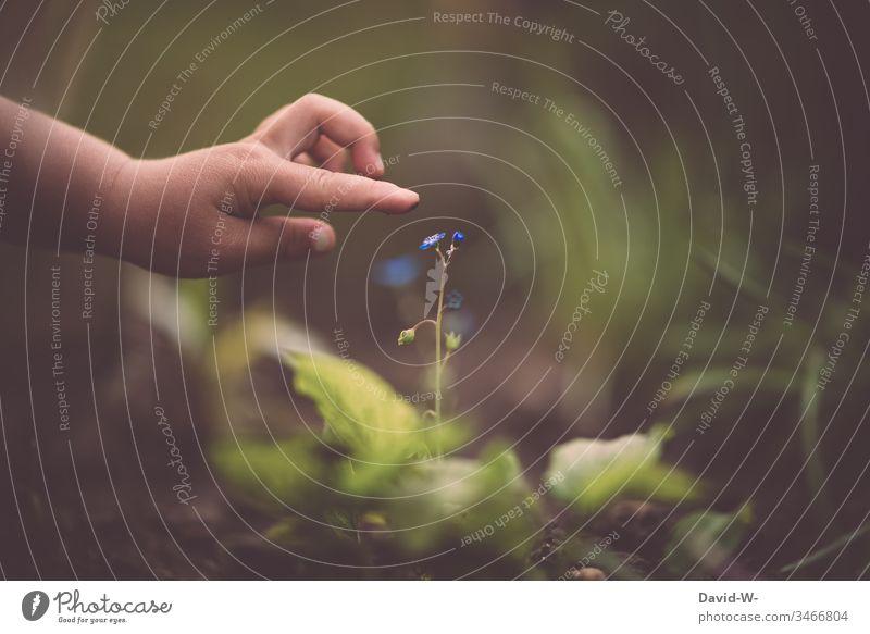 Kind im Garten erkundet mit zarten Händen die wunderbare Welt unserer Natur Blume berühren erkunden anfassen Zukunft zarte Farben Finger Hand niedlich