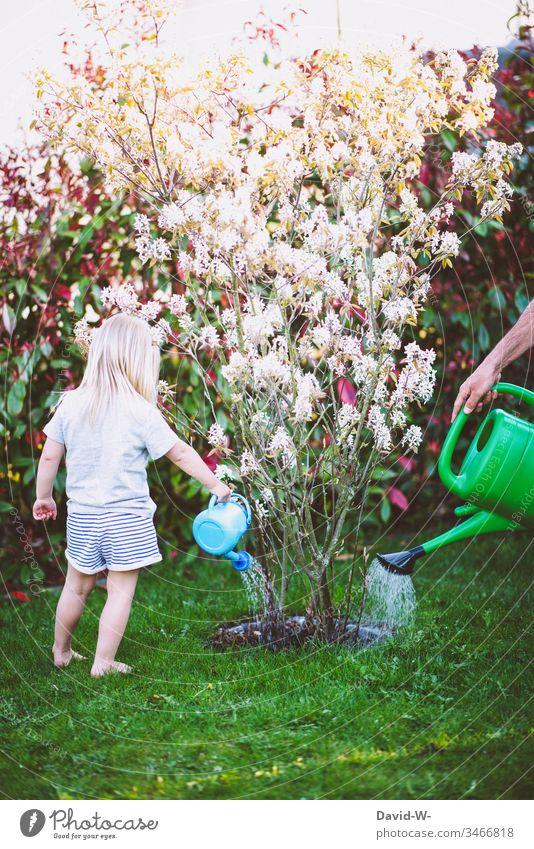Teamwork - Vater und Kind wässern gemeinsam im Garten Vater mit Kind Gießkanne Mädchen Tochter Zusammensein Zusammenhalt Kindererziehung Pflanzen Blumen