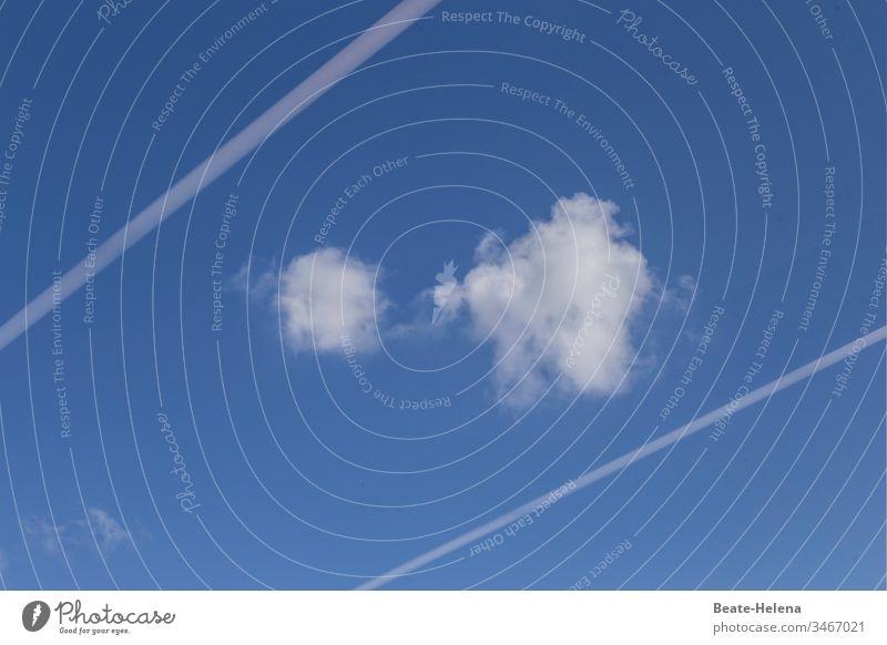 Kleine Wolken zwischen Kondensstreifen gefangen Schaf-Wolken Himmel himmelblau blau-weiß Blauer Himmel Sommer Textfreiraum Froschperspektive Schönes Wetter