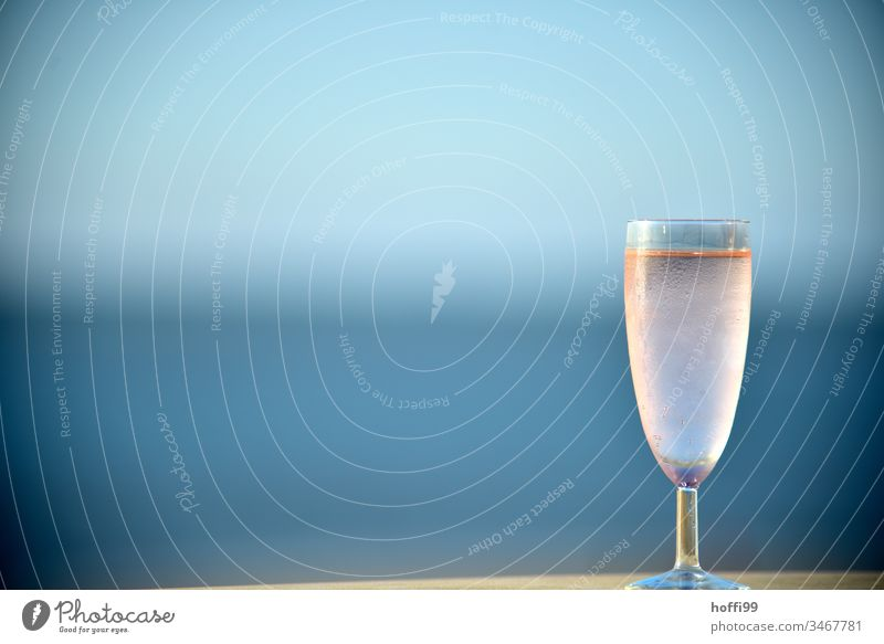 Champagner am Meer Wein Sektglas Weinglas Glas Alkohol Prosecco Erfrischungsgetränk Longdrink trinken lecker Spirituosen Cocktail Getränk Bar Limonade