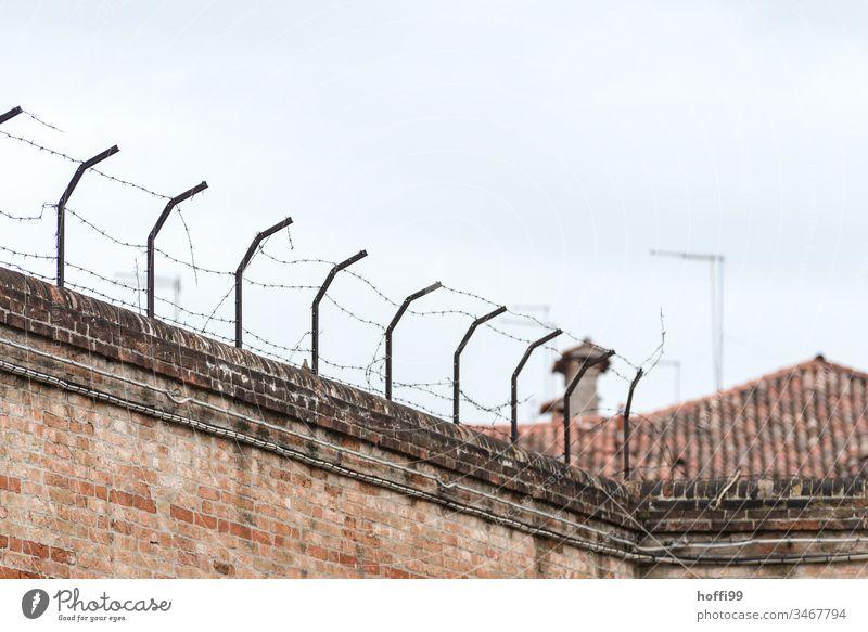 Stacheldraht auf alter Mauer Zaun Stacheldrahtzaun Hof Grenze Schutz gefährlich Metall Menschenleer stachelig bedrohlich Barriere Sicherheit Verbote