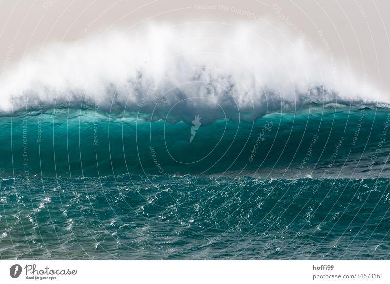 große sich brechende Welle mit sprühender Gischt Brandung wild Wellen Meer Wasser türkis gigantisch Natur Kraft Ferien & Urlaub & Reisen Sal Cabo Verde frisch