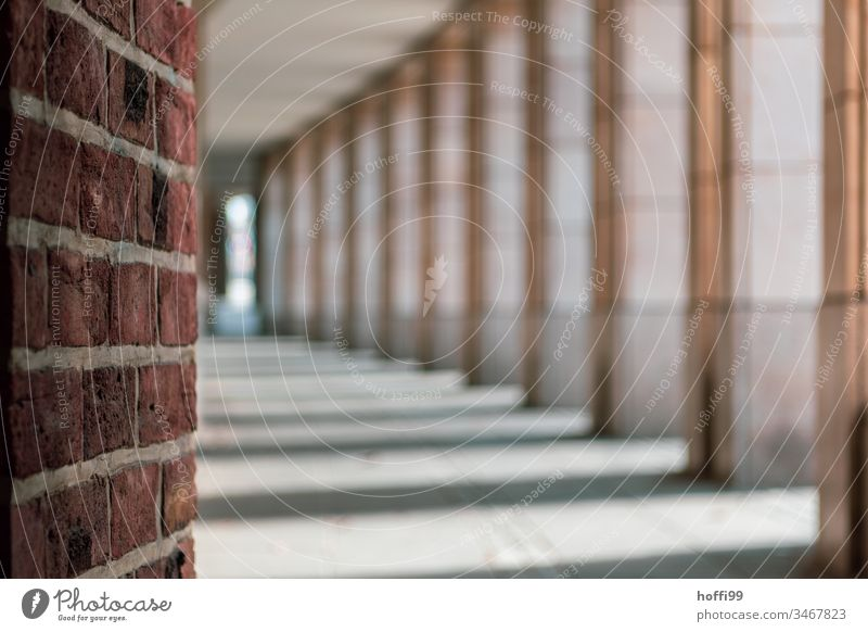 Blick in die Arkaden der Stadt Arkadengang Architektur Säule Gebäude Arkadengängen Symmetrie Fassade Strukturen & Formen elegant Fluchtpunkt Altstadt