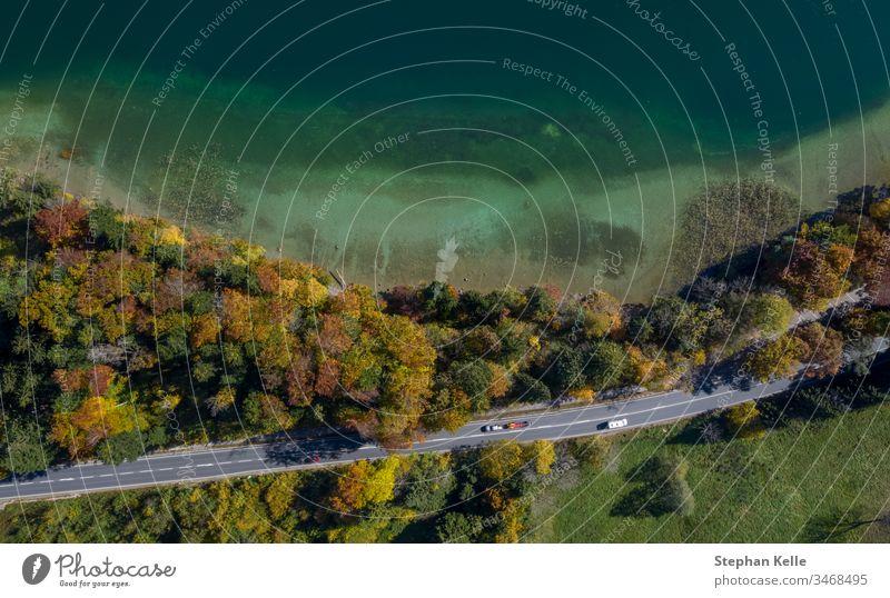 Draufsicht auf einen Strand in der Nähe von Bäumen und eine Straße mit fahrenden Autos im Herbst. Baum Wasser Spätsommer Natur MEER Landschaft Bucht Ufer Küste