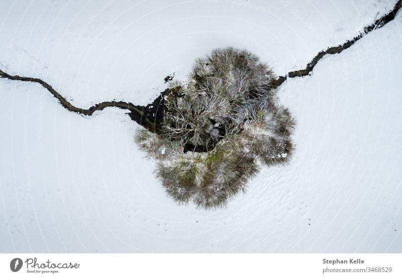 Luftperspektive auf einen einzelnen Baum und ein überquerendes Flüsschen in einer winterlich verschneiten Draufsicht. Winter Schnee Single Fluss Bach allein