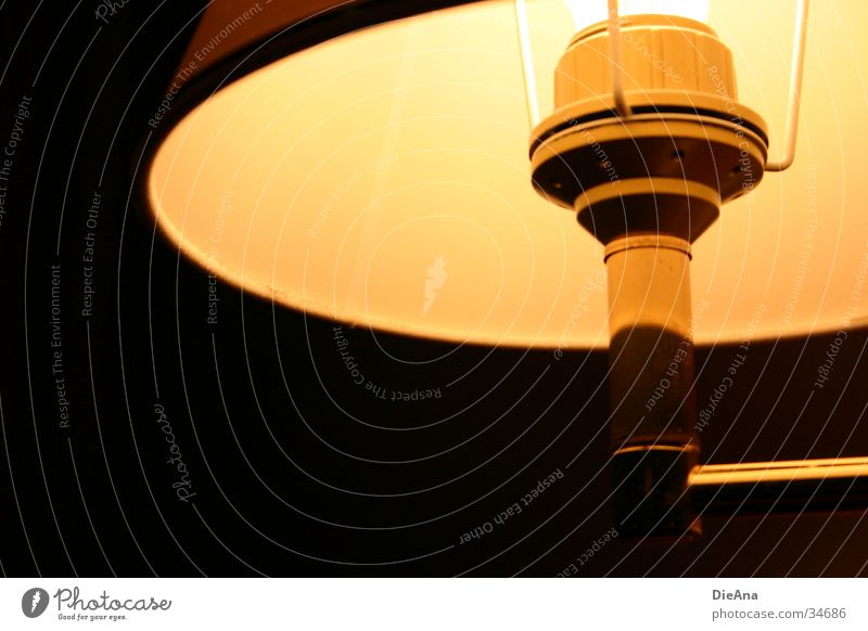 Low-Lit Lamp Glühbirne Licht Raum Physik gelb schwarz dunkel Häusliches Leben lampe. lampenschirm Lampe Beleuchtung Wärme gold hell lamp shade bedside lamp