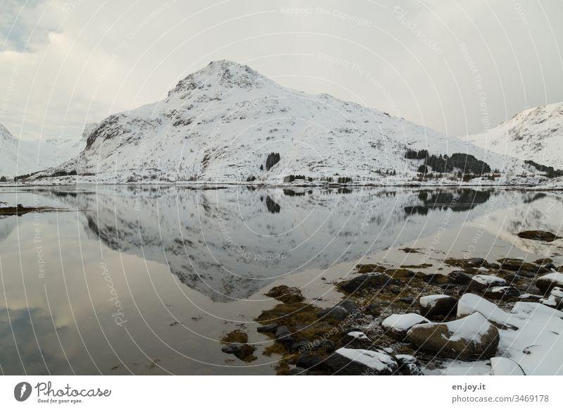 Schneebedeckter Berg mit Spiegelung in Fjord Lofoten Norwegen Skandinavien Wasser Kälte Kalt Winter Eis Frost Landschaft Winterlandschaft Außenaufnahme Natur