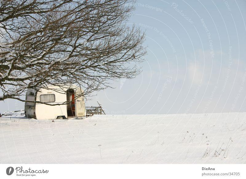 Winter Camping Wohnwagen kalt Baum Februar weiß Wohnmobil Natur Häusliches Leben Schönes Wetter Schnee Ast Himmel blau automobile camper cold february sunny
