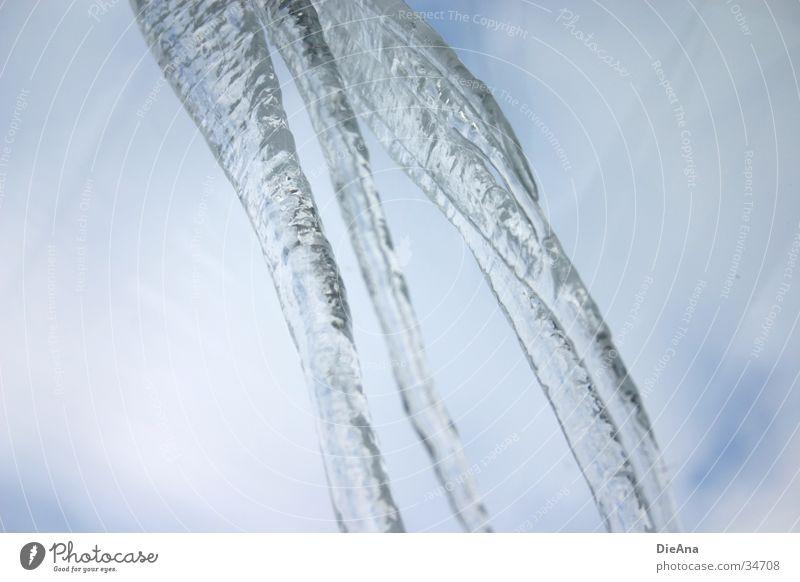 Icicle Eiszapfen Winter gefroren kalt grau Himmel Wasser blau nach unten hängen icicle water frozen cold sky