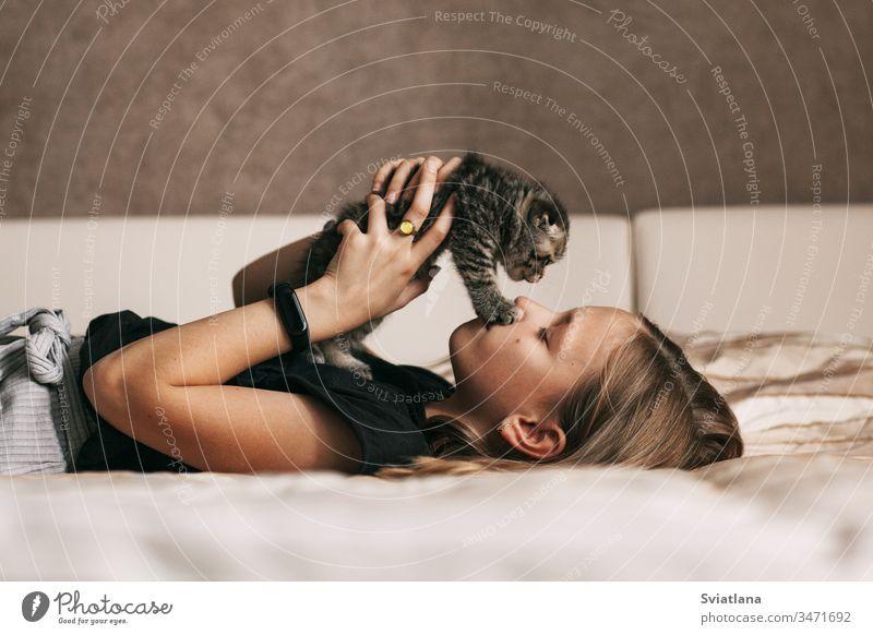 Das Kind liegt auf dem Bett und spielt mit einem kleinen britischen Kätzchen Frau schön Schönheit Porträt Behaarung hübsch Erwachsener Mode Schlafzimmer