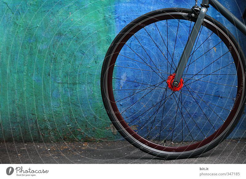 alles im blauen Bereich Sport Fitness Sport-Training Erfolg Fahrradfahren Mauer Wand Fassade Stein Beton Linie sportlich grün schwarz Bewegung Ordnung Trennung