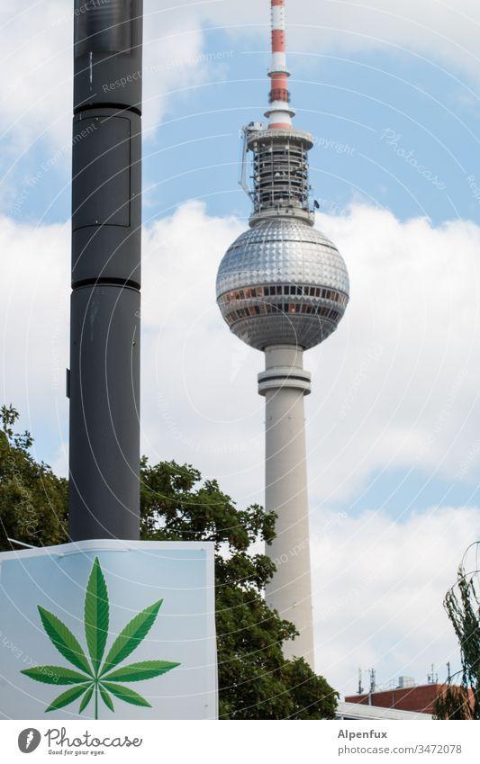 hier riechts doch nach |... Berlin Marihuana Erholung Cannabis Medikament Rauschmittel Pflanze Berliner Fernsehturm Außenaufnahme Hanf Medizin Alternativmedizin