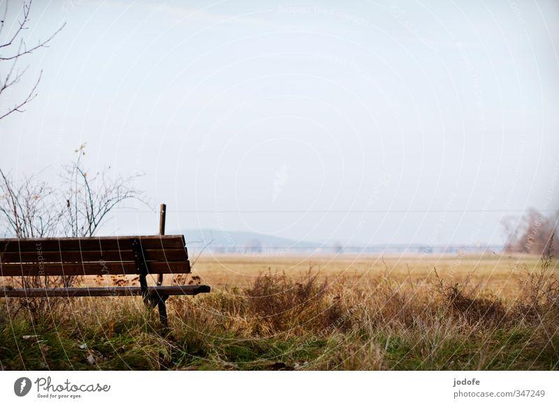 Schöne Aussichten Himmel Natur Erholung Landschaft Umwelt Ferne Herbst Gras grau braun Feld Idylle Pause Landwirtschaft Hügel