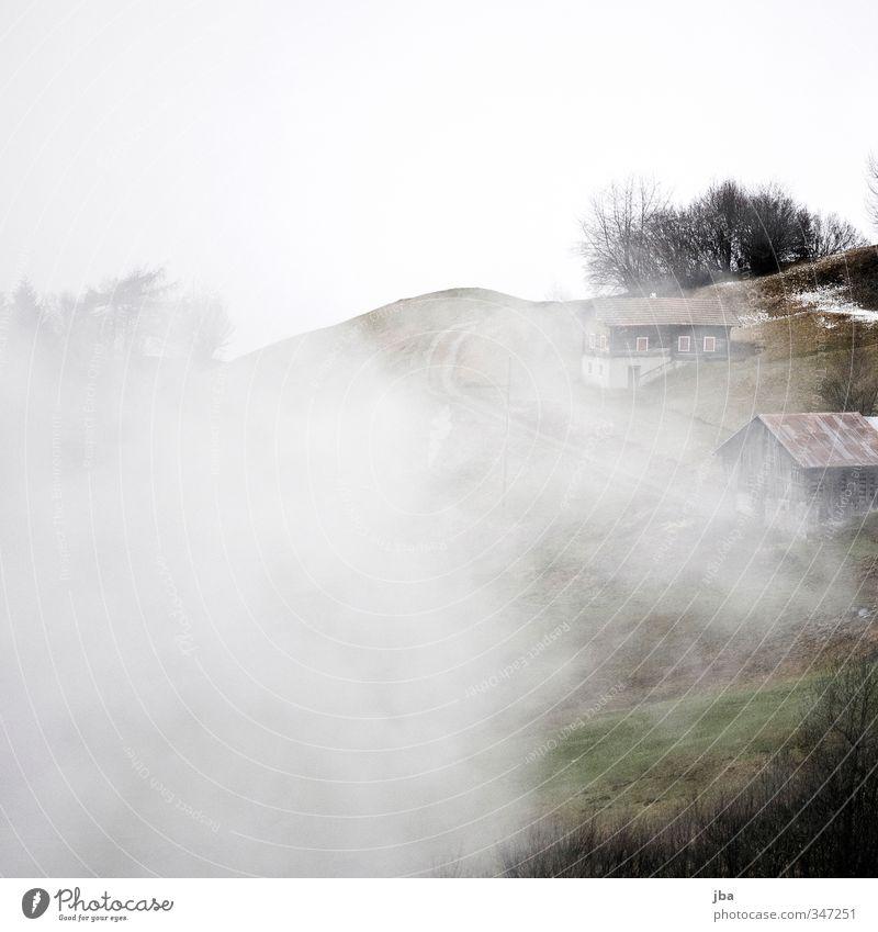 Frühling im Bündnerland Natur weiß Einsamkeit Landschaft ruhig Wolken Umwelt kalt Berge u. Gebirge Schnee Frühling Wege & Pfade Regen Wind Nebel Zufriedenheit