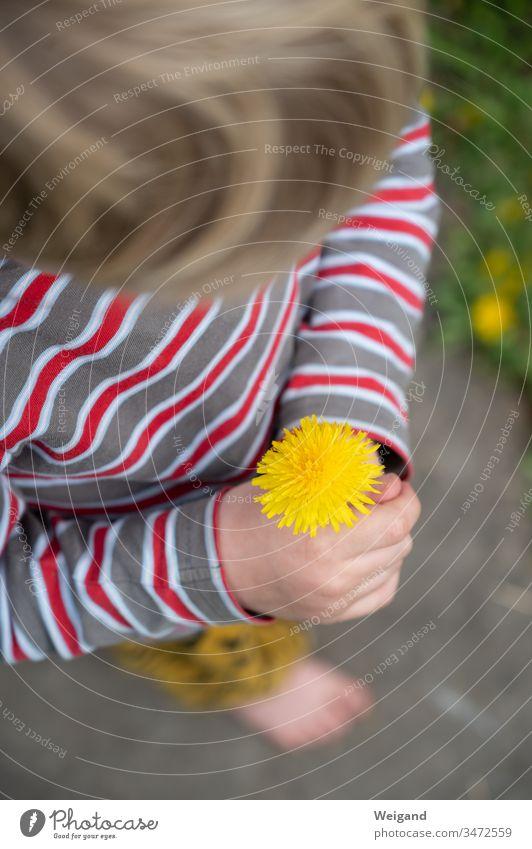 Muttertag Blume Blumenstrauß Löwenzahn Geschenk Kindheit Dankeschön blühen
