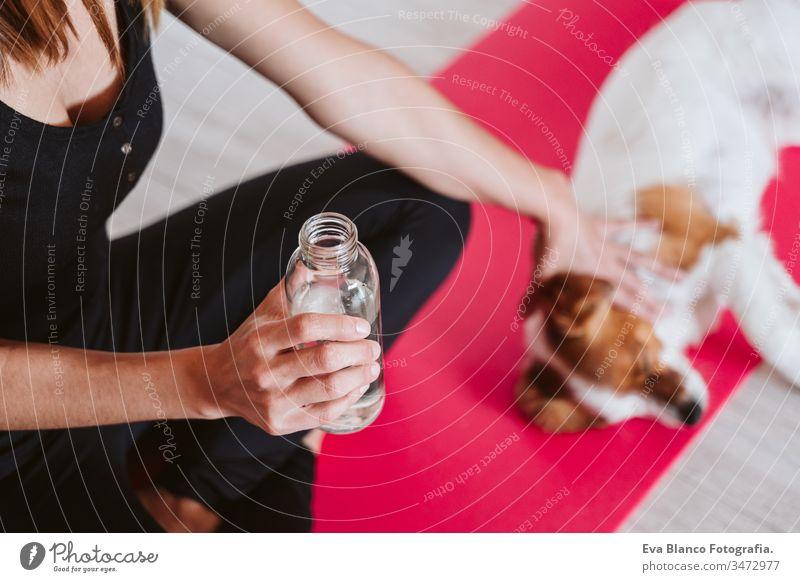 süße kleine Jack-Russell-Hündin, die zu Hause mit ihrem Besitzer auf einer Yogamatte sitzt und Wasser trinkt. Gesunder Lebensstil im Haus Hund Frau heimwärts