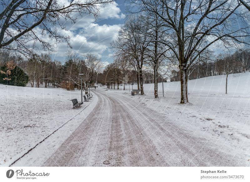 Winter in München, der Weg zum Schnee. Park Natur Landschaft Himmel Wolken weiß kalt Klima Umwelt Nizza schön Saison gefroren Bank außerhalb Baum Straße Bayern