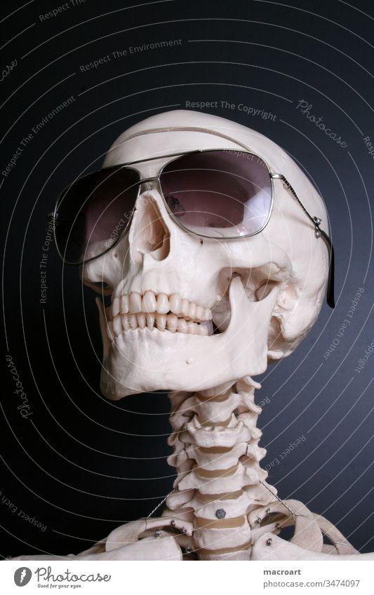 Skelett mit Sonnenbrille Knochen Kopf Schädel tot Tod Brille schwarz menschlich Körper sonnenbrille Punktschrift kopf schŠdel knochen