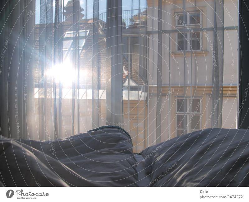 Bett am Morgen schlafen Schlafzimmer Bettwäsche Innenaufnahme Erholung Farbfoto Bettdecke Bettlaken Menschenleer Kissen Kopfkissen weiß ruhig träumen Licht Tag