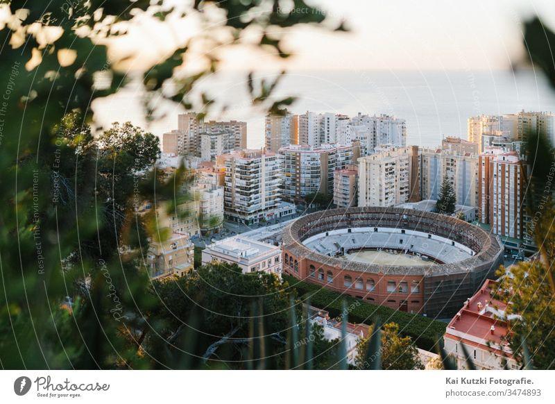 Die historische Stierkampf-Arena von Malaga im Sonnenaufgang Stierkampfarena Mittelmeer Tourismus Tourist touristisch Städtereise Ferien & Urlaub & Reisen
