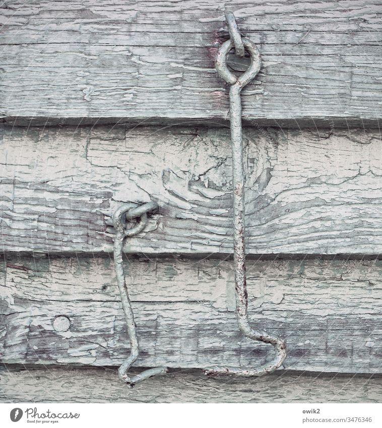 Alte Freunde Wand Holz Haken hängen zwei alt Vergänglichkeit Metall gebogen gegenüber kontakt freunde Zweisamkeit Detailaufnahme Holzmaserung Farbe abblättern